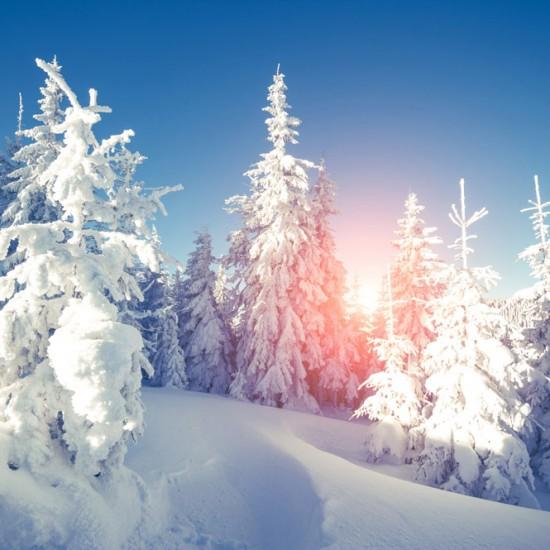 bigstock-Majestic-winter-landscape-glow-108705338